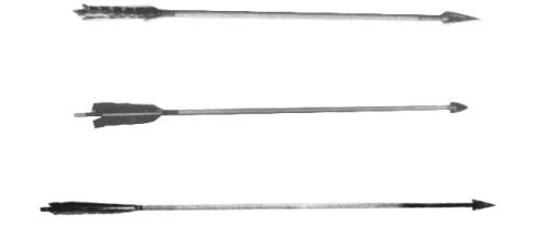 Examples of North American arrows