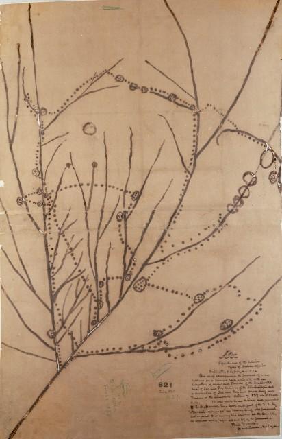 No Heart's Ioway map, 1837.